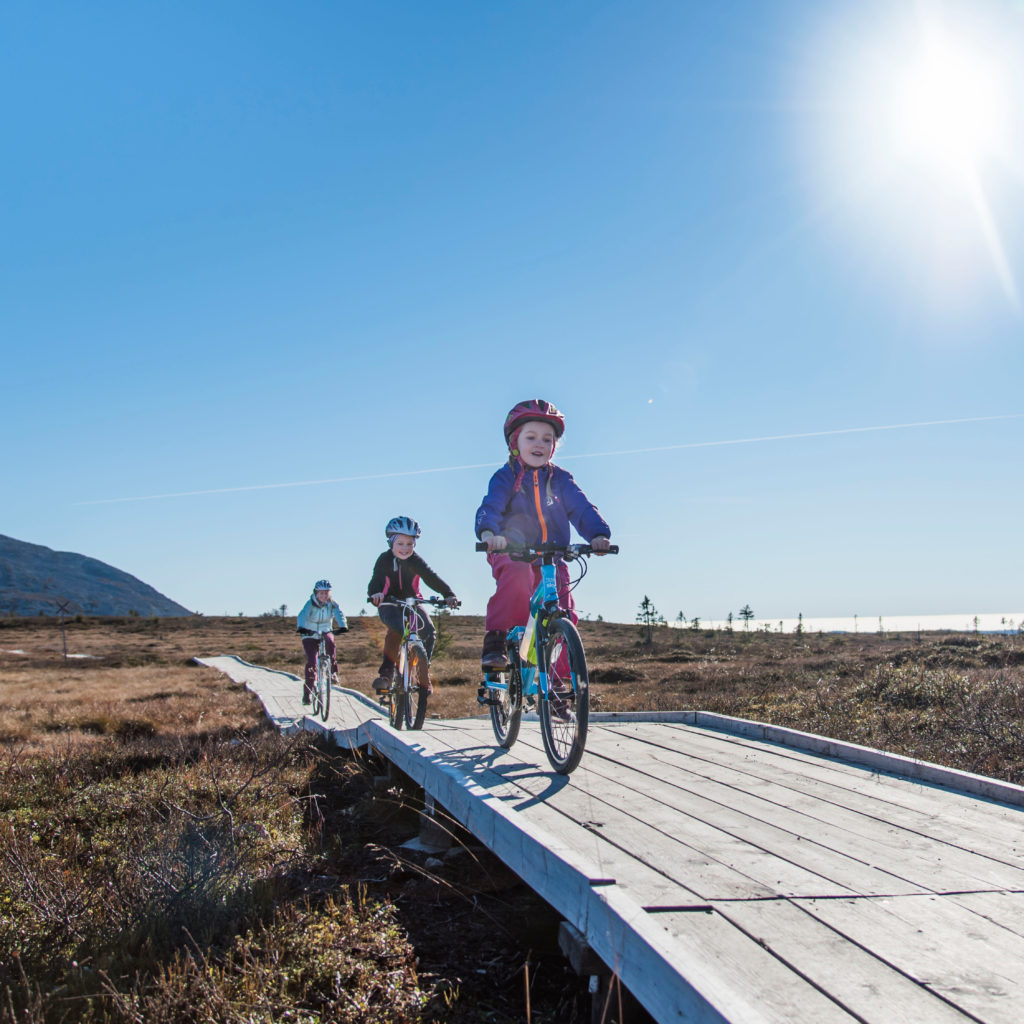 Fjellrunden is a well-organized cycling trail in Trysil, bookTrysilonline