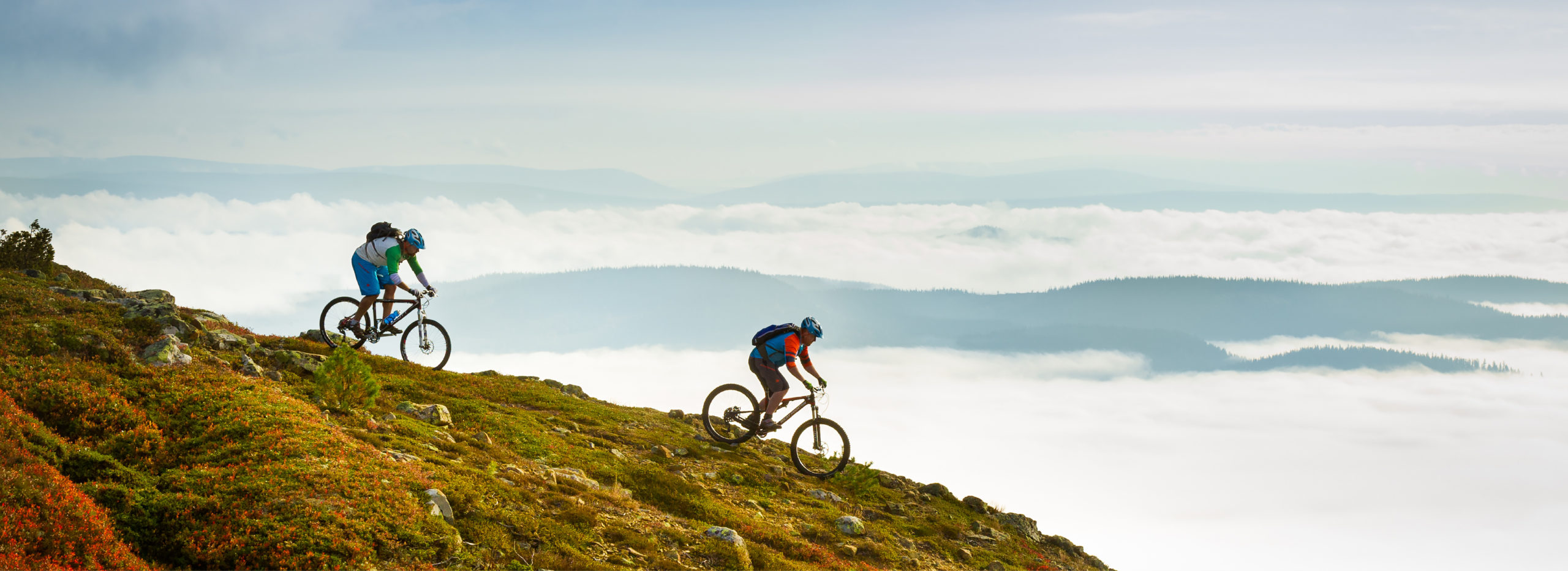 downhill biking in Trysil