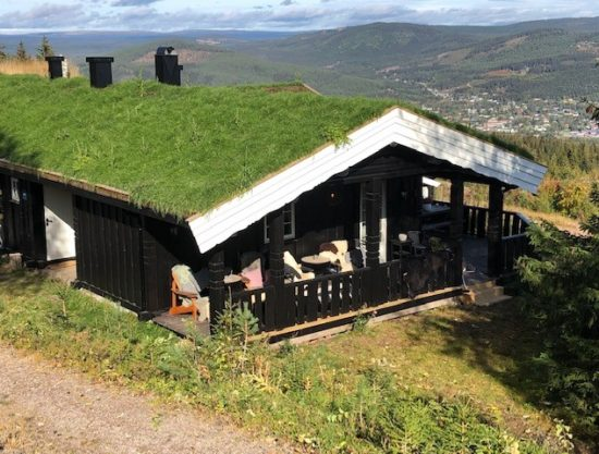 outside, cabin to rent in Trysil, Hytte 589