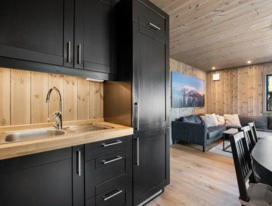 kjøkken og stue, leilighet til leie i Trysil, Trysiltunet 18B