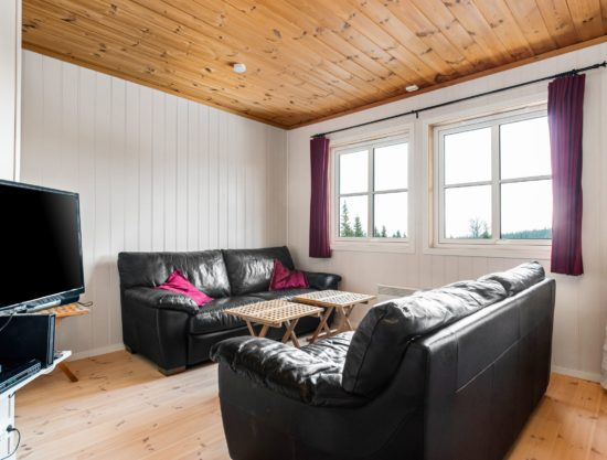 living room, apartment to rent in Trysil, Panorama 755D