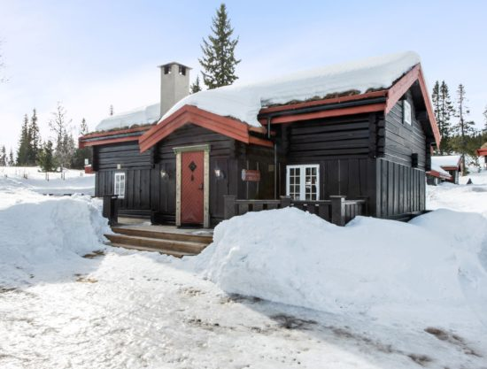 outside, cabin to rent in Trysil, Fageråsen 366C