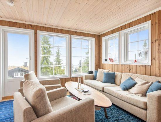 stue, hytte i Trysil til leie, Skurufjellet 1165C