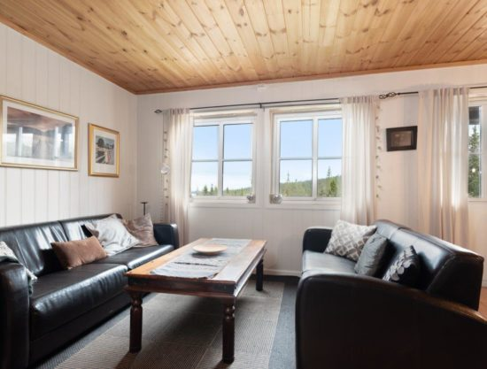 stue, Lei leilighet i Trysil - Panorama 754B