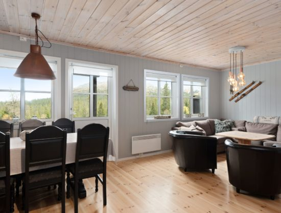 livingroom, apartment to rent in Trysil, Panorama 755A