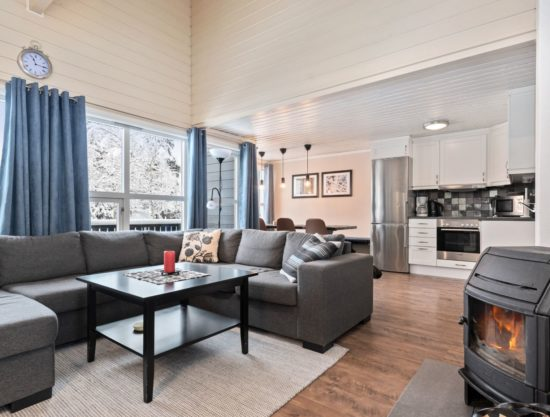 livingroom, apartment to rent in Trysil, TrysilAlpin38a