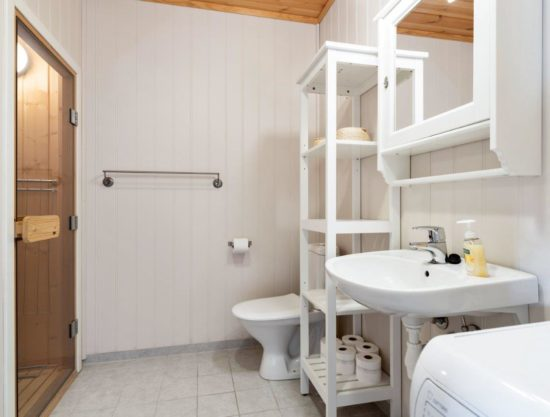 bathroom with sauna, apartment to rent in Trysil, Panorama 757C