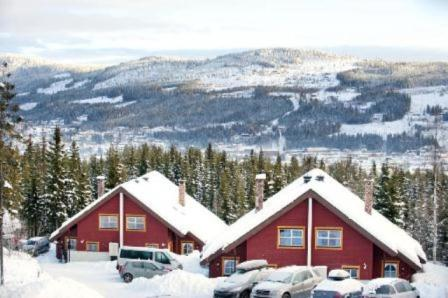 outside, apartment to rent in Trysil, bakkebygrenda7a