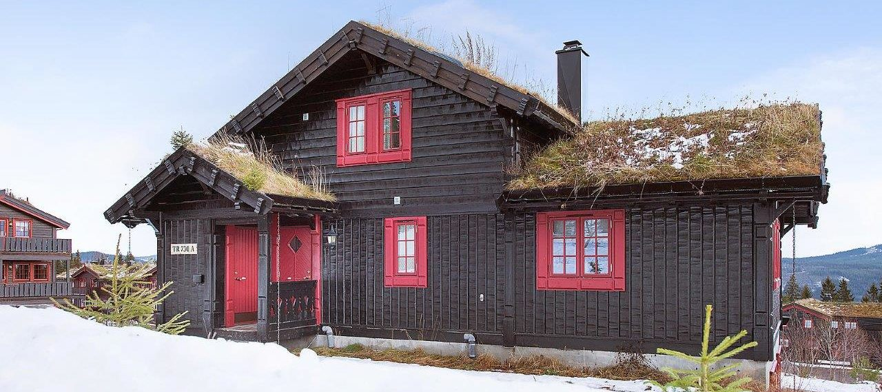 outside, cabin to rent in Trysil, Storsten 730