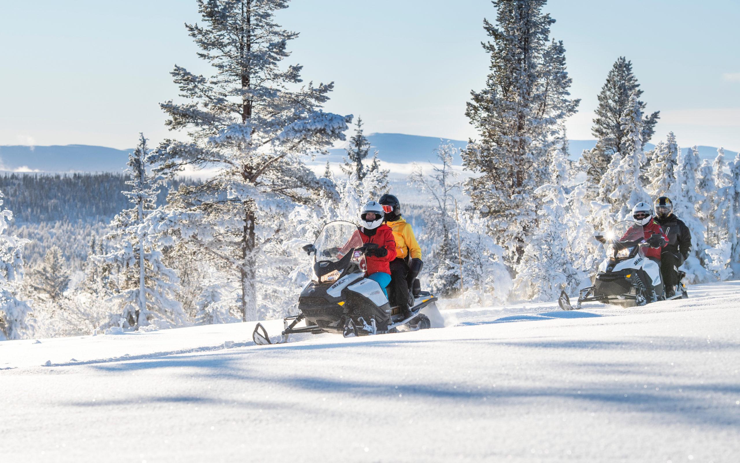 bilde av flere på guidet snøscootertur i Engerdal/trysil, arrangert av bookTrysilonline