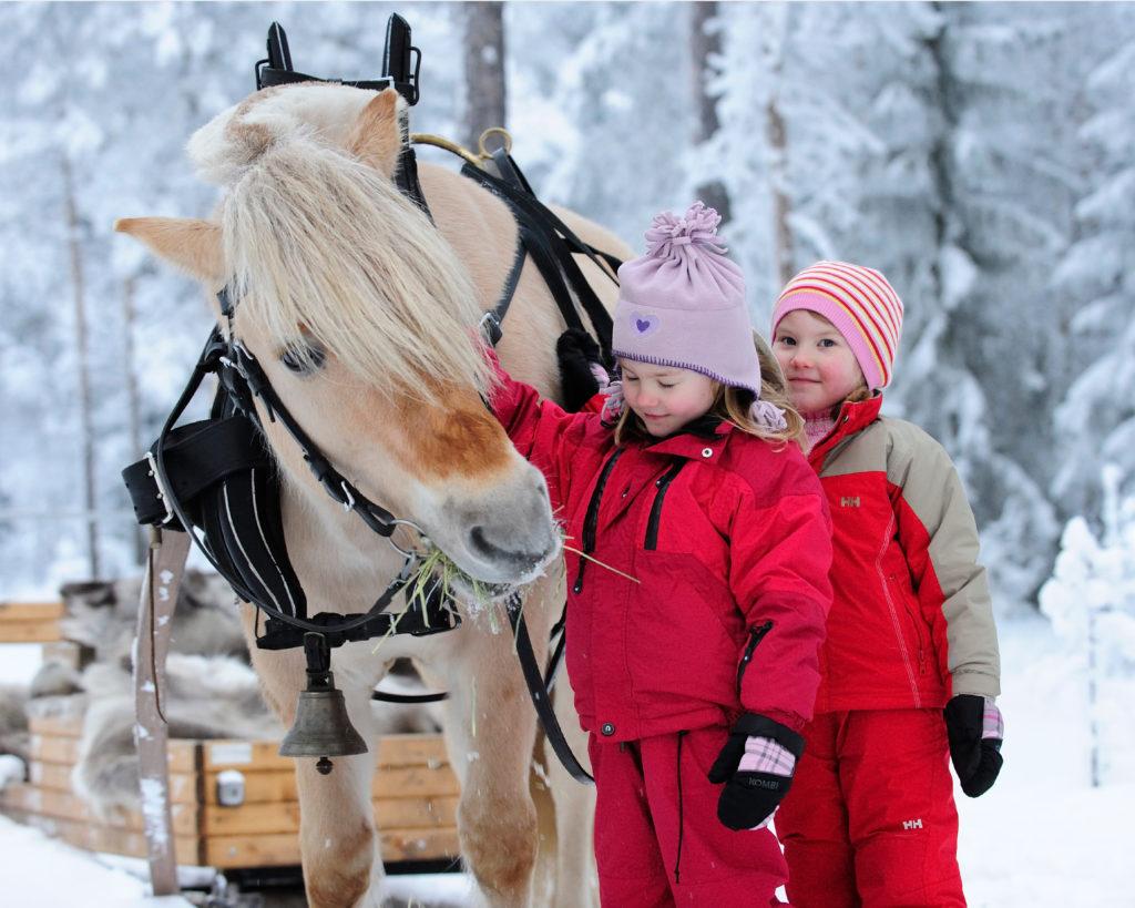 jenter på tur med hest og slede i Trysil