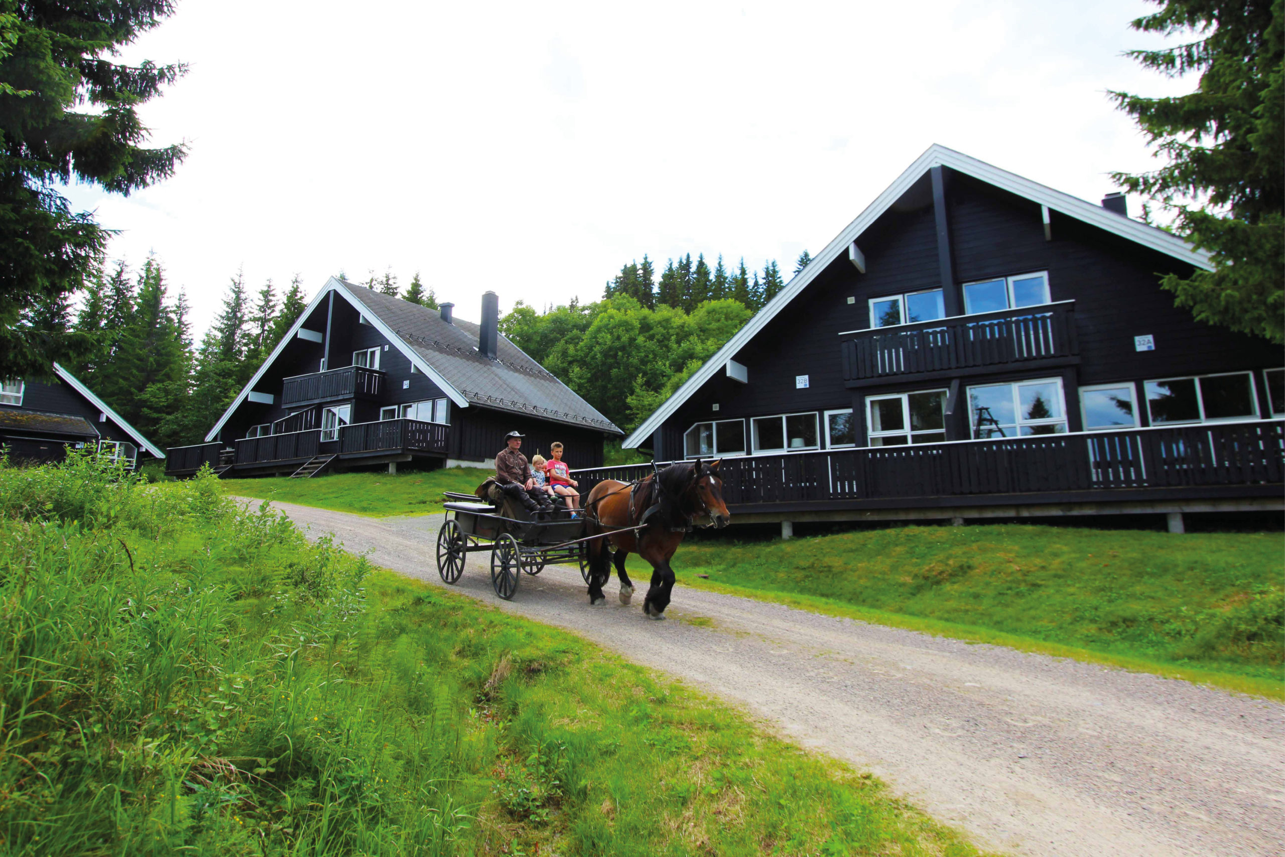 Picture of apartments and cabins to rent in Trysil Alpin, bookTrysilonline